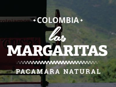 COLOMBIA COFFEE - LAS MARGARITAS - PACAMARA NATURAL