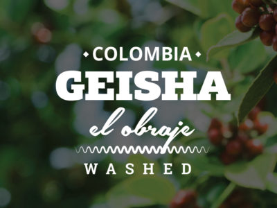 COLOMBIA COFFEE - GEISHA - EL OBRAJE - WASHED