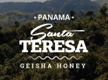 PANAMA COFFEE - SANTA TERESA - GEISHA HONEY