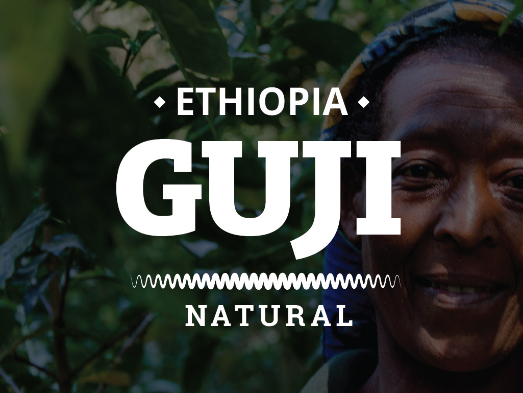ETHIOPIA COFFEE - GUJI - NATURAL
