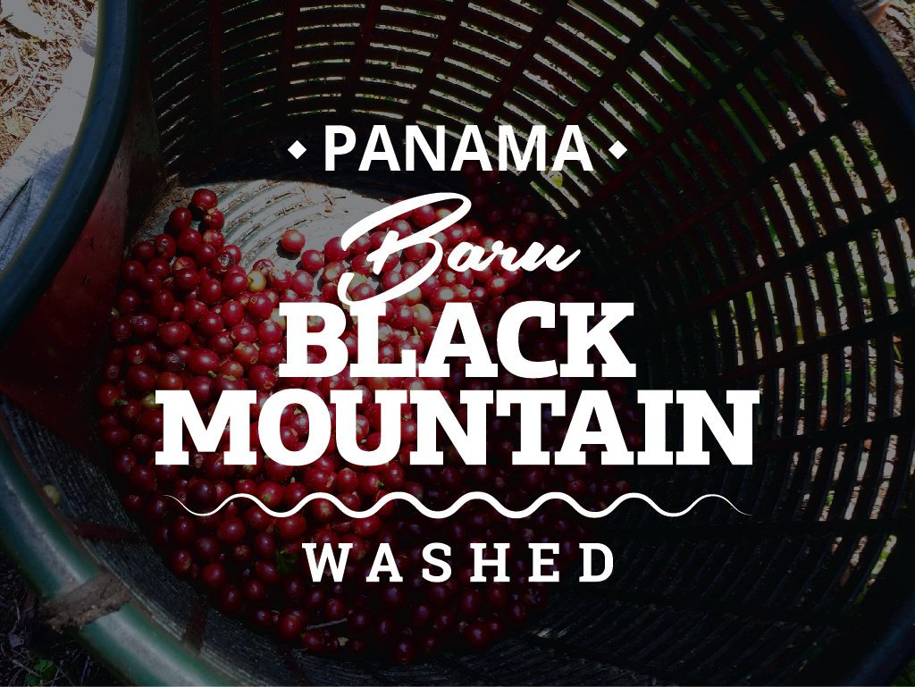PANAMA COFFEE - Panama Baru Black mountain