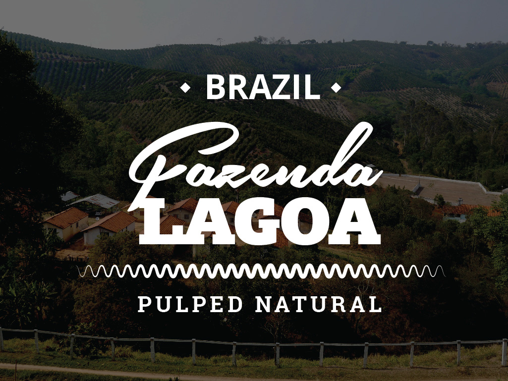 BRAZIL COFFEE - GARENDA LAGOA - PULPED NATURAL