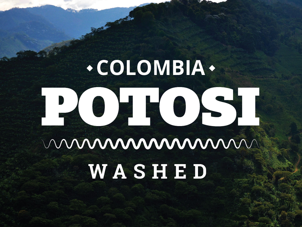 COLOMBIA COFFEE - POTOSI - WASHED