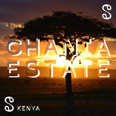 Kenya – Chania Estate